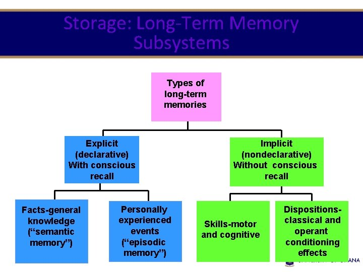 Storage: Long-Term Memory Subsystems Types of long-term memories Explicit (declarative) With conscious recall Facts-general