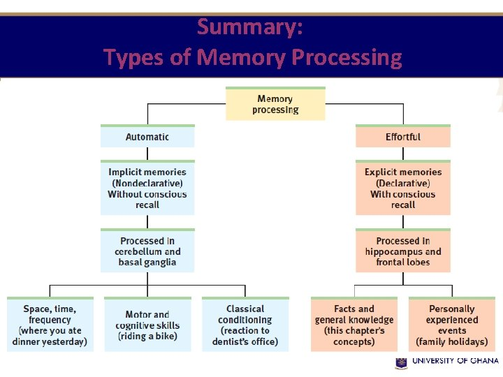 Summary: Types of Memory Processing
