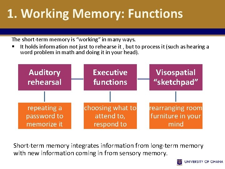 """1. Working Memory: Functions The short-term memory is """"working"""" in many ways. § It"""