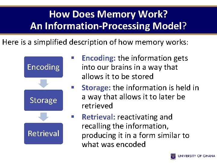 How Does Memory Work? An Information-Processing Model? Here is a simplified description of how