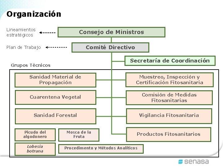 Organización Lineamientos estratégicos Consejo de Ministros Comité Directivo Plan de Trabajo Secretaría de Coordinación