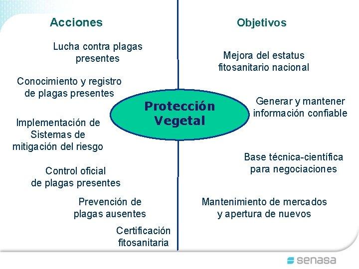 Acciones Objetivos Lucha contra plagas presentes Conocimiento y registro de plagas presentes Implementación de