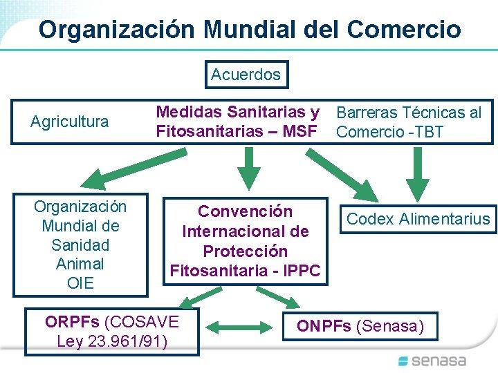 Organización Mundial del Comercio Acuerdos Agricultura Organización Mundial de Sanidad Animal OIE Medidas Sanitarias