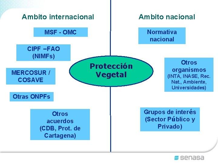Ambito internacional Normativa nacional MSF - OMC CIPF –FAO (NIMFs) MERCOSUR / COSAVE Ambito