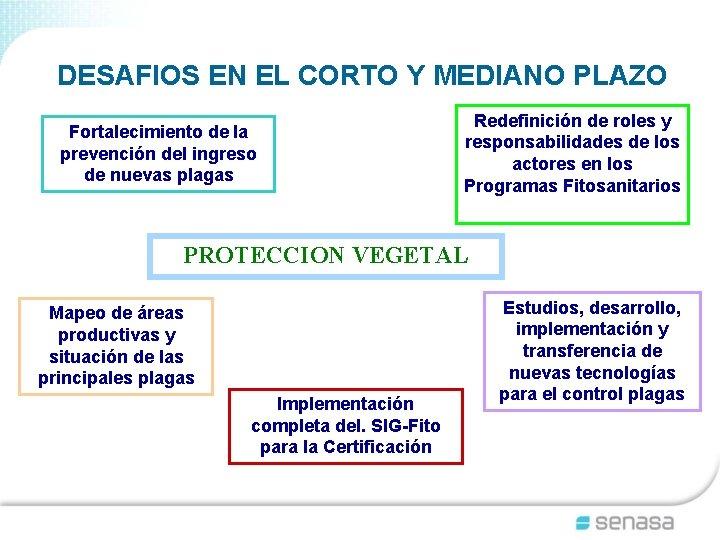 DESAFIOS EN EL CORTO Y MEDIANO PLAZO Fortalecimiento de la prevención del ingreso de
