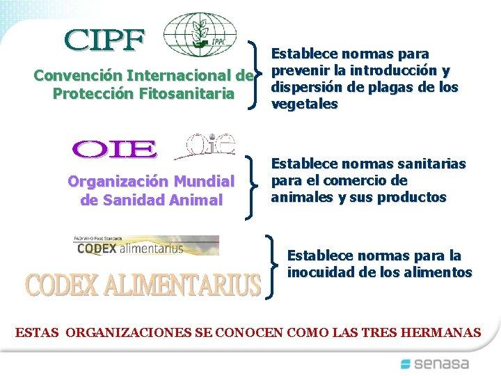 Convención Internacional de Protección Fitosanitaria Organización Mundial de Sanidad Animal Establece normas para prevenir