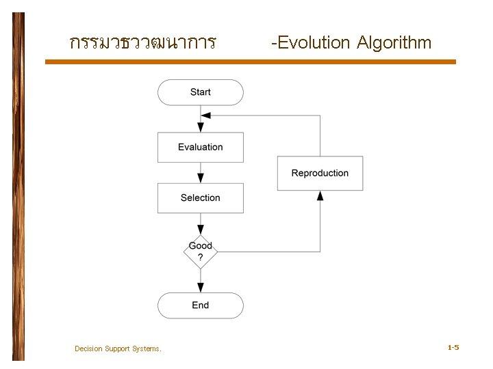 กรรมวธววฒนาการ Decision Support Systems. -Evolution Algorithm 1 -5