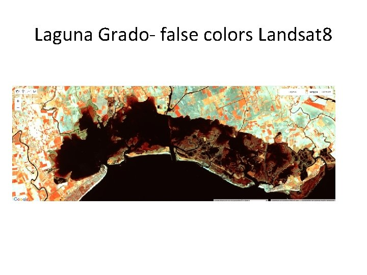 Laguna Grado- false colors Landsat 8
