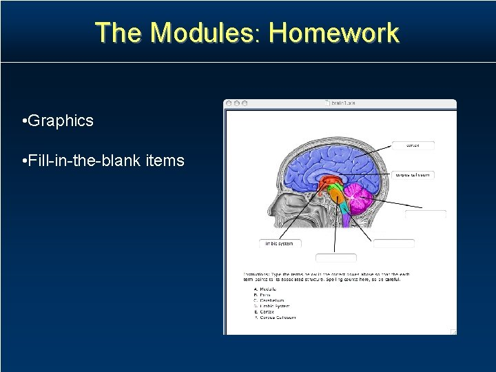 The Modules: Homework • Graphics • Fill-in-the-blank items