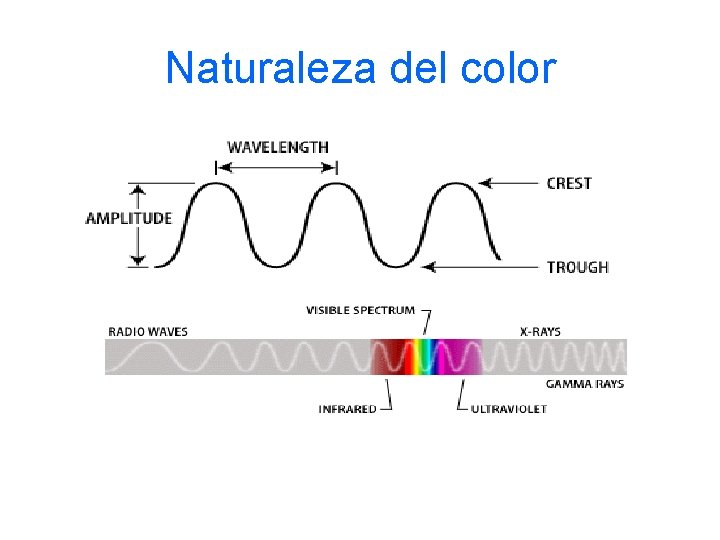 Naturaleza del color
