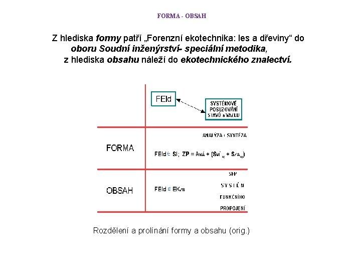 """FORMA - OBSAH Z hlediska formy patří """"Forenzní ekotechnika: les a dřeviny"""" do oboru"""
