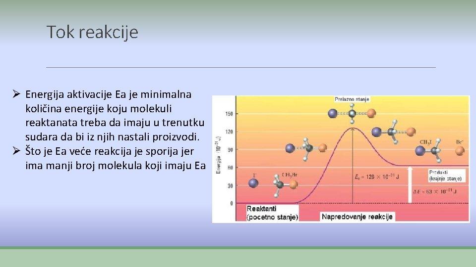 Tok reakcije Ø Energija aktivacije Ea je minimalna količina energije koju molekuli reaktanata treba