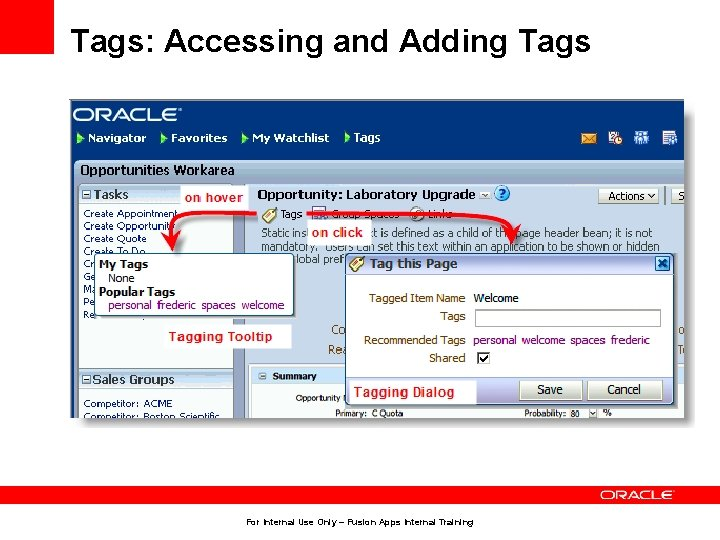 Tags: Accessing and Adding Tags For Internal Use Only – Fusion Apps Internal Training
