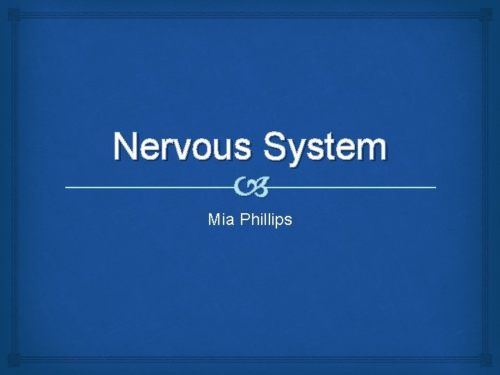 Nervous System Mia Phillips