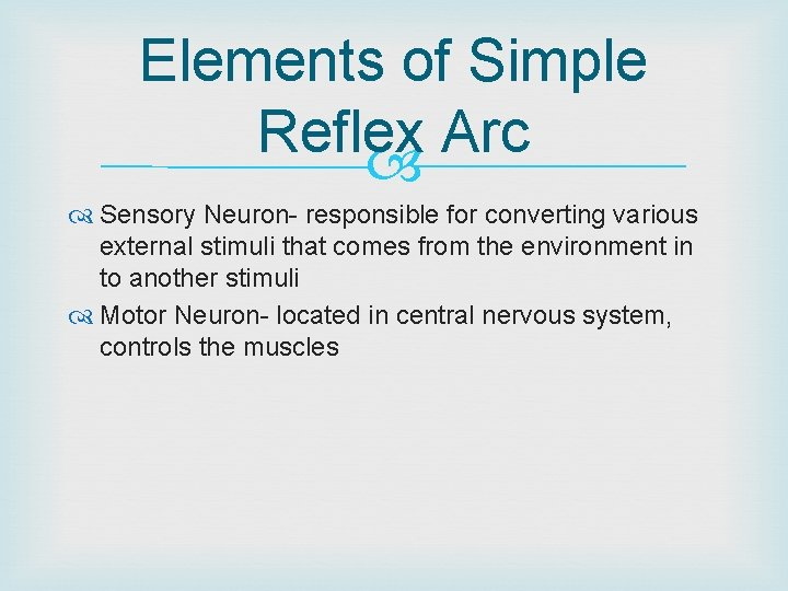 Elements of Simple Reflex Arc Sensory Neuron- responsible for converting various external stimuli that