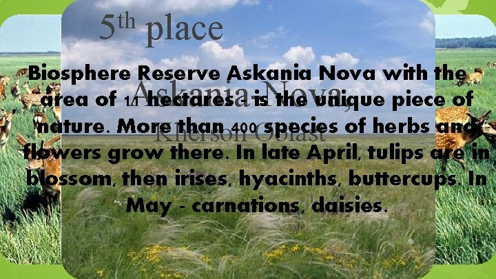 th 5 place Biosphere Reserve Askania Nova with the area of 11 hectares -
