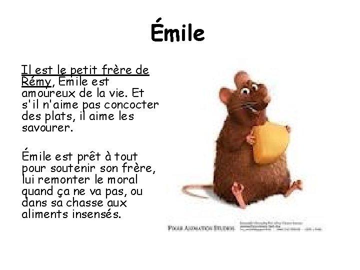 Émile Il est le petit frère de Rémy, Émile est amoureux de la vie.
