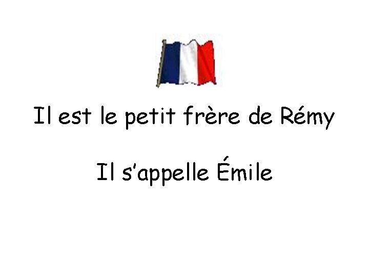 Il est le petit frère de Rémy Il s'appelle Émile