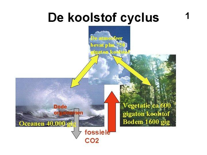 De koolstof cyclus De atmosfeer bevat plm 750 gigaton koolstof Vegetatie ca 600 gigaton