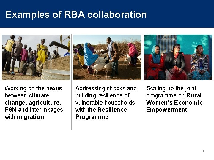 Examples of RBA collaboration Working on the nexus between climate change, agriculture, FSN and