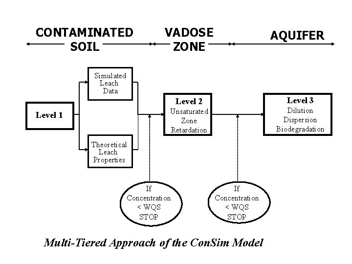 CONTAMINATED SOIL VADOSE ZONE AQUIFER Simulated Leach Data Level 3 Level 2 Dilution Dispersion