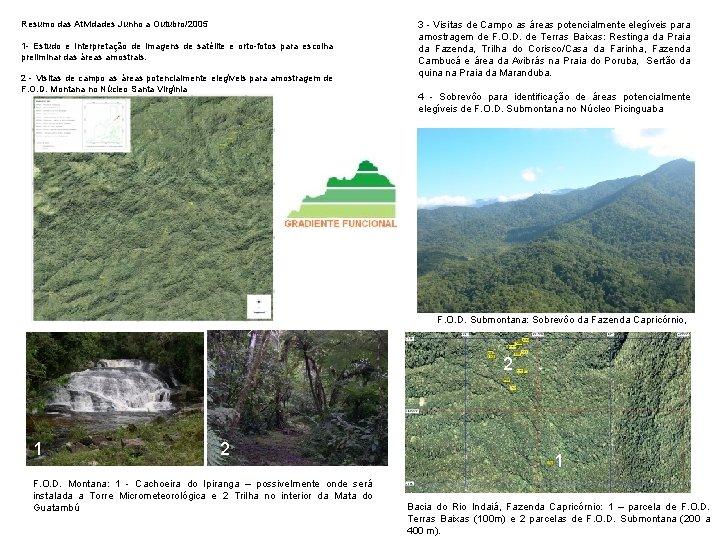 Resumo das Atividades Junho a Outubro/2005 1 - Estudo e Interpretação de imagens de