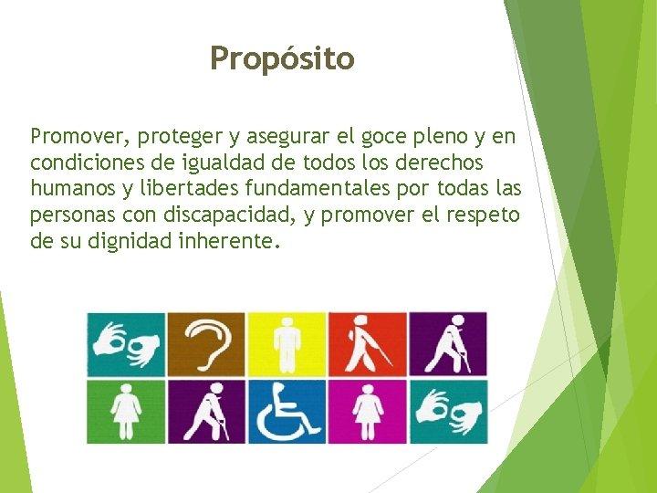 Propósito Promover, proteger y asegurar el goce pleno y en condiciones de igualdad de