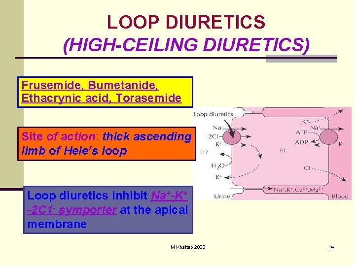 LOOP DIURETICS (HIGH-CEILING DIURETICS) Frusemide, Bumetanide, Ethacrynic acid, Torasemide Site of action: thick ascending