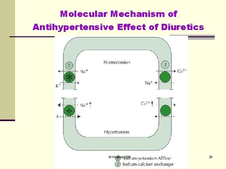 Molecular Mechanism of Antihypertensive Effect of Diuretics M Khattab 2008 26