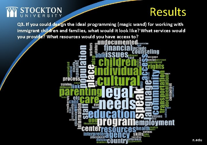 Results Q 3. If you could design the ideal programming (magic wand) for working