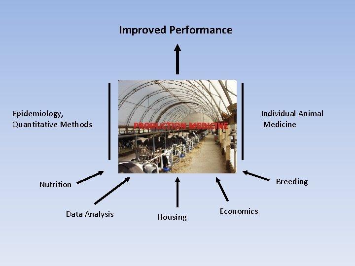 Improved Performance Epidemiology, Quantitative Methods PRODUCTION MEDICINE Breeding Nutrition Data Analysis Individual Animal Medicine