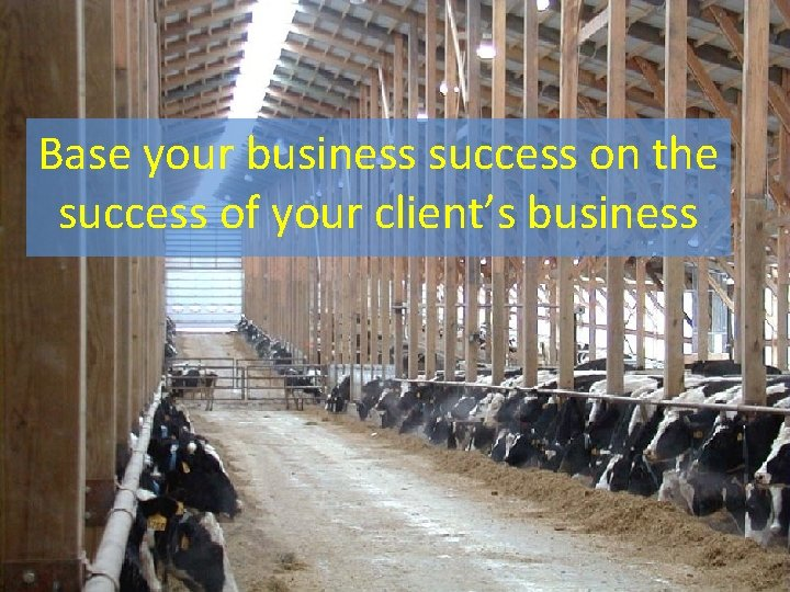 Base your business success on the success of your client's business