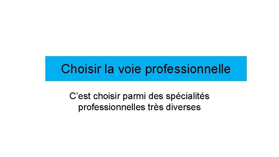 Choisir la voie professionnelle C'est choisir parmi des spécialités professionnelles très diverses