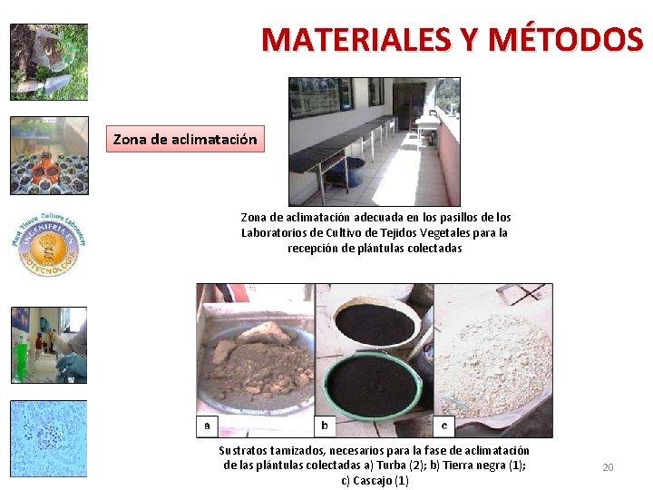 MATERIALES Y MÉTODOS Zona de aclimatación adecuada en los pasillos de los Laboratorios de