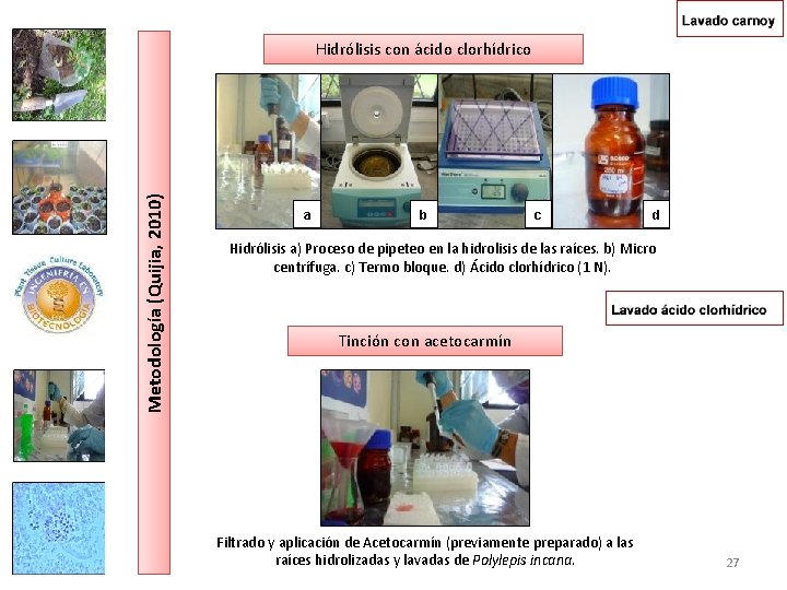 Metodología (Quijia, 2010) Hidrólisis con ácido clorhídrico a b c d Hidrólisis a) Proceso