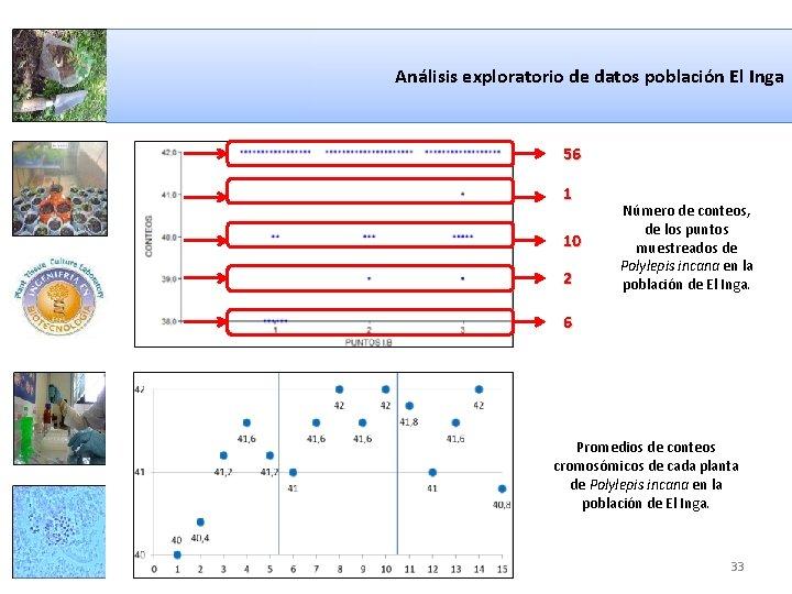 Análisis exploratorio de datos población El Inga 56 1 10 2 Número de conteos,
