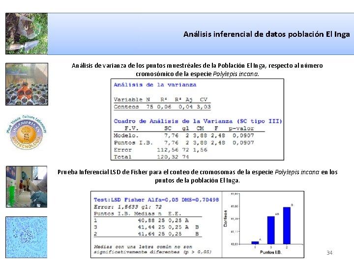 Análisis inferencial de datos población El Inga Análisis de varianza de los puntos muestréales