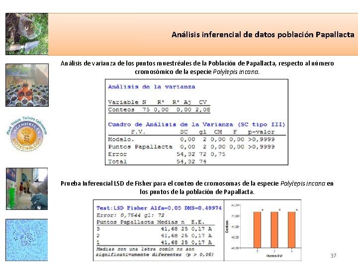 Análisis inferencial de datos población Papallacta Análisis de varianza de los puntos muestréales de