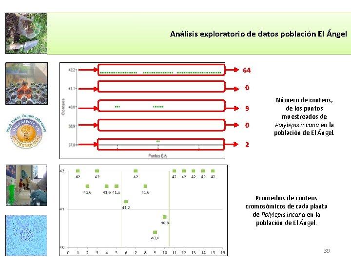 Análisis exploratorio de datos población El Ángel 64 0 9 0 Número de conteos,