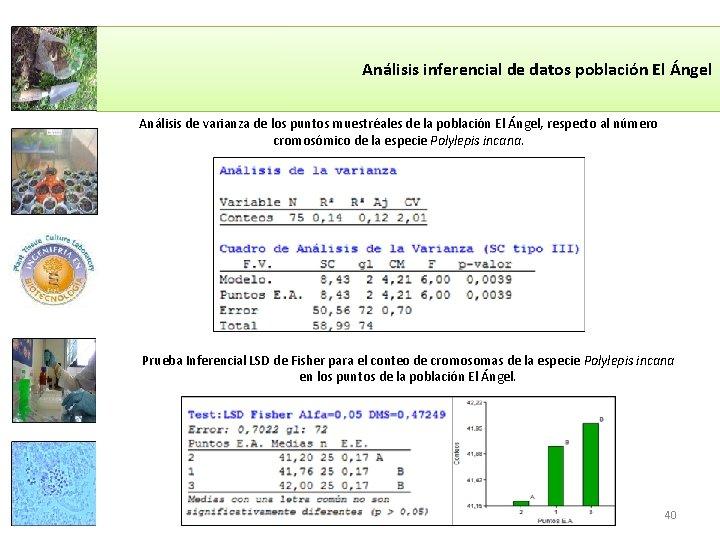 Análisis inferencial de datos población El Ángel Análisis de varianza de los puntos muestréales