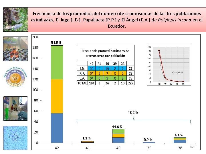 Frecuencia de los promedios del número de cromosomas de las tres poblaciones estudiadas, El