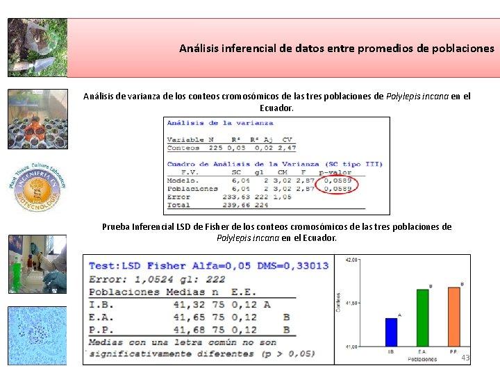 Análisis inferencial de datos entre promedios de poblaciones Análisis de varianza de los conteos