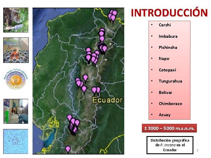 INTRODUCCIÓN • Carchi • Imbabura • Pichincha • Napo • Cotopaxi • Tungurahua •