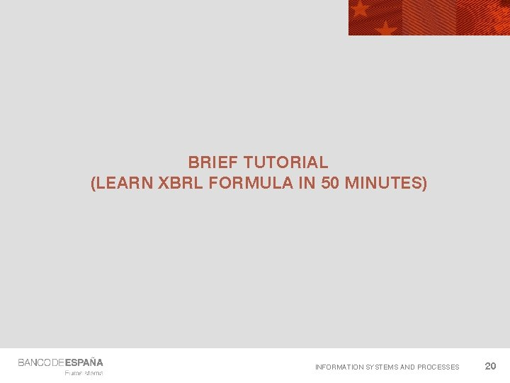 BRIEF TUTORIAL (LEARN XBRL FORMULA IN 50 MINUTES) INFORMATION SYSTEMS AND PROCESSES 20