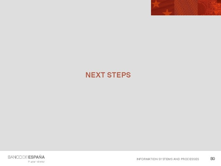 NEXT STEPS INFORMATION SYSTEMS AND PROCESSES 80