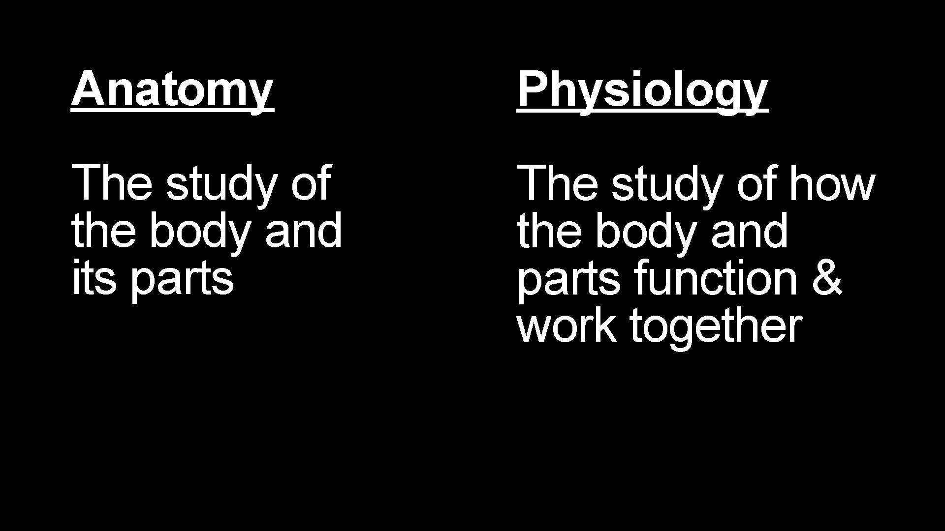 Anatomy Physiology The study of the body and its parts The study of how