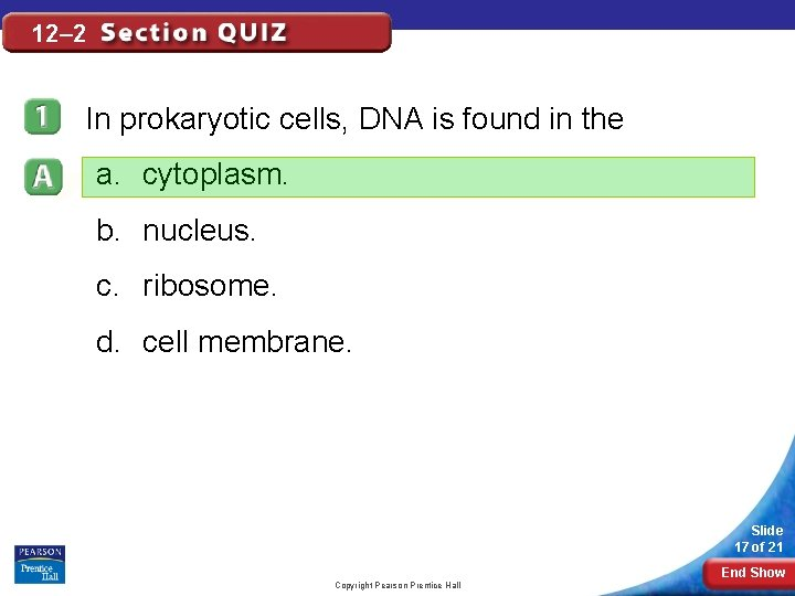 12– 2 In prokaryotic cells, DNA is found in the a. cytoplasm. b. nucleus.