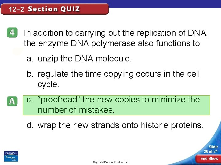 12– 2 In addition to carrying out the replication of DNA, the enzyme DNA