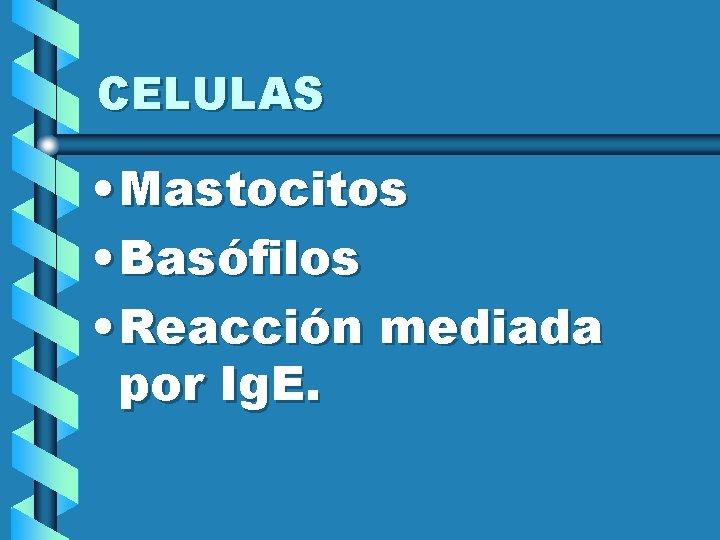 CELULAS • Mastocitos • Basófilos • Reacción mediada por Ig. E.