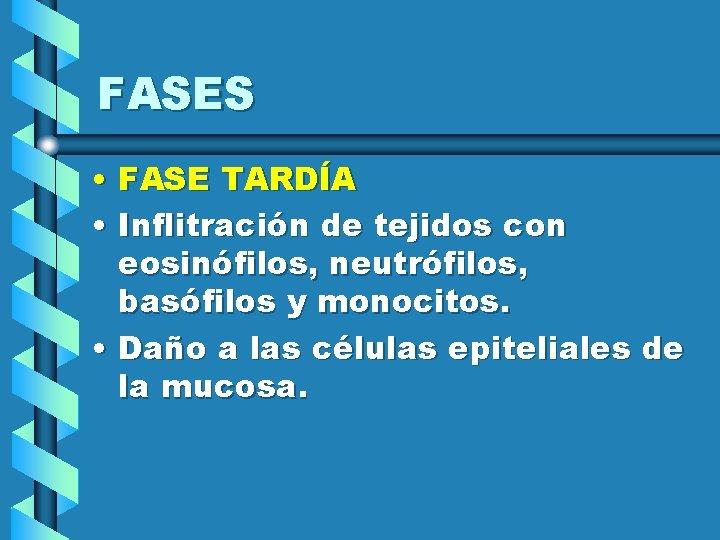 FASES • FASE TARDÍA • Inflitración de tejidos con eosinófilos, neutrófilos, basófilos y monocitos.